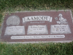 Brian Lewis Aamodt