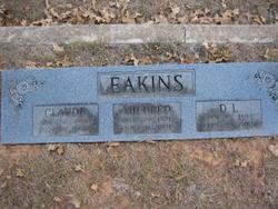 D. L. Eakins