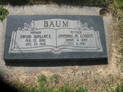 David Wallace Baum
