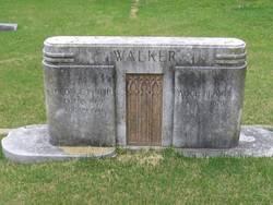 alice walker 1955