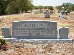 Hubert Houston Bailey