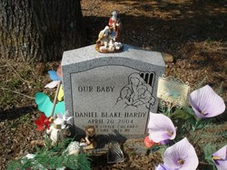 Daniel Blake Hardy