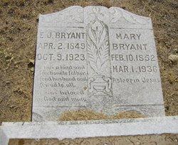 Mary Ann <I>McKinney</I> Bryant