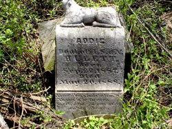 Addie Hulett