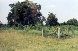 Pettus Cemetery