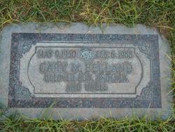 Gary M. Berland