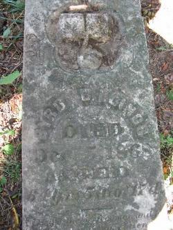 Byrd Franklin Billings