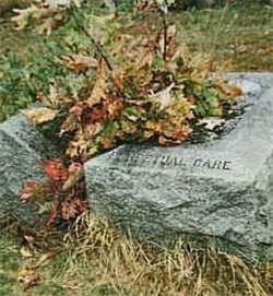 Vermilion County Saving Graves