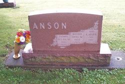 Alan Mark Anson