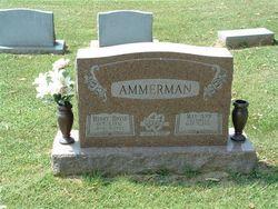 Henry David Ammerman