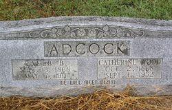 Caleb B Adcock