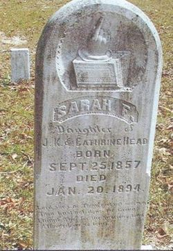 Sarah F Head