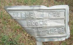Marney Lee Brown