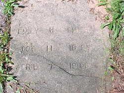 Emily Henrietta <I>Johnson</I> Smith