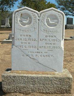 Cornelius Y. Carey
