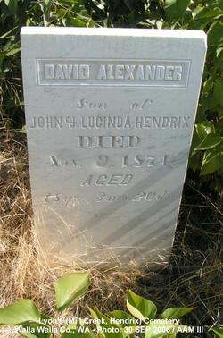David Alexander Hendrix