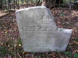 Elizabeth Hand