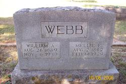 William A. Webb