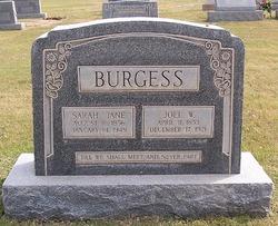 Sarah Jane <I>Harris</I> Burgess