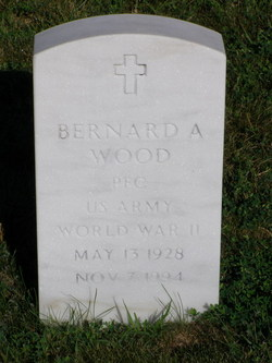 Bernard A Wood