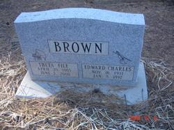 Theta File Brown