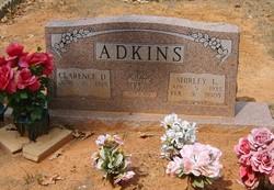 Shirley Lee <I>Banks</I> Adkins
