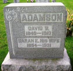 David W. Adamson