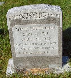 Albert Elken Bush