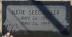 Ilene Seegmiller