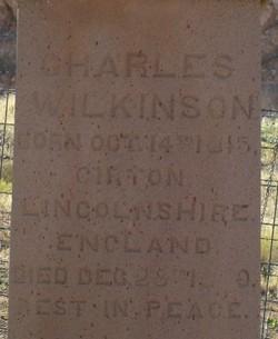 Charles William Wilkinson