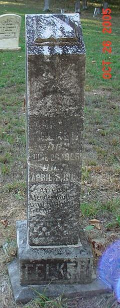Anna Emma <I>Lane</I> Felker