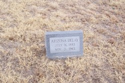 "Arizona ""Ari"" <I>Delay</I> Delay"