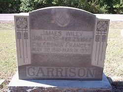 James Wiley Garrison