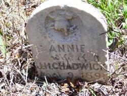 Annie <I>Jackson</I> Chadwick