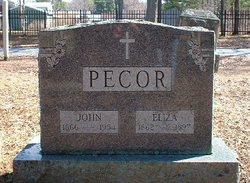 Eliza Jane <I>Dague</I> Pecor
