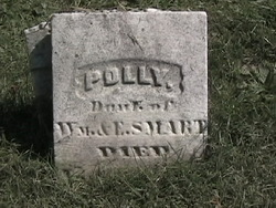 Polly Smart