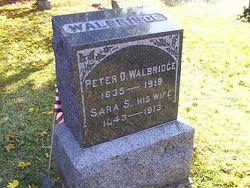 Sgt Peter Davis Walbridge, Sr