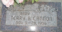 Terry Bracken Cannon