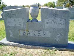 Violet Rose <I>Vasholz</I> Baker