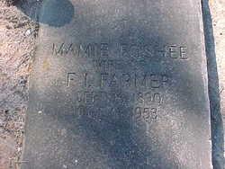 """Mary Winifred """"Mamie"""" <I>Foshee</I> Farmer"""