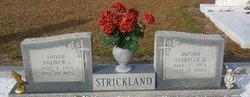 Andrew Jackson Strickland, Sr