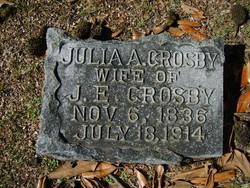 Julia A. <I>Wilkinson</I> Crosby