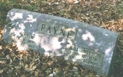 Julia Ann <I>Wilson</I> Payne