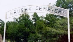 Brushy Cemetery
