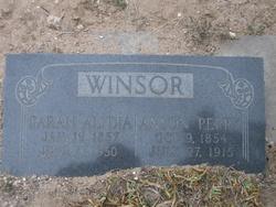Sarah Alydia <I>Terry</I> Winsor