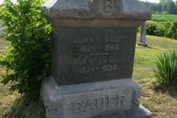 John R Bauer