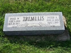 Peter A Tremulis