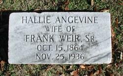 "Harriette Josephine ""Hallie"" <I>Angevine</I> Weir"