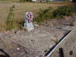 Miller-Sneed Cemetery