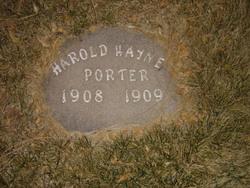 Harold Wayne Porter